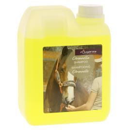 Champô para cavalo
