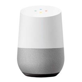Assistente Google Home Slate White/Grey